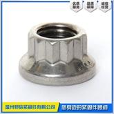 专业定制JB /T 6687-1993 12角法兰面螺母