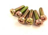 GB6191 内六角花形圆柱头8.8级螺丝 防盗螺钉